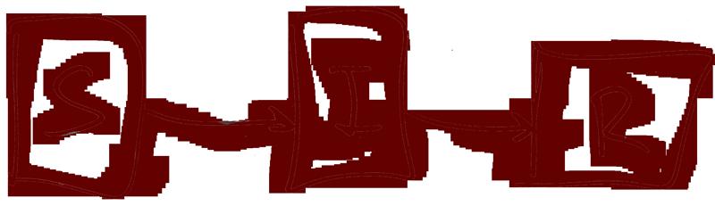 SIR diagram